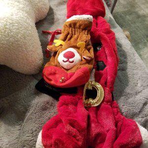 Santa And Reindeer Dog Costume